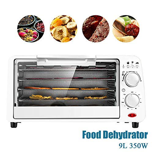 Review Of DreamLab Food Dehydrator Electric Fruit Meat Dryer Machine Food Preserver Metal Body 5 Ant...