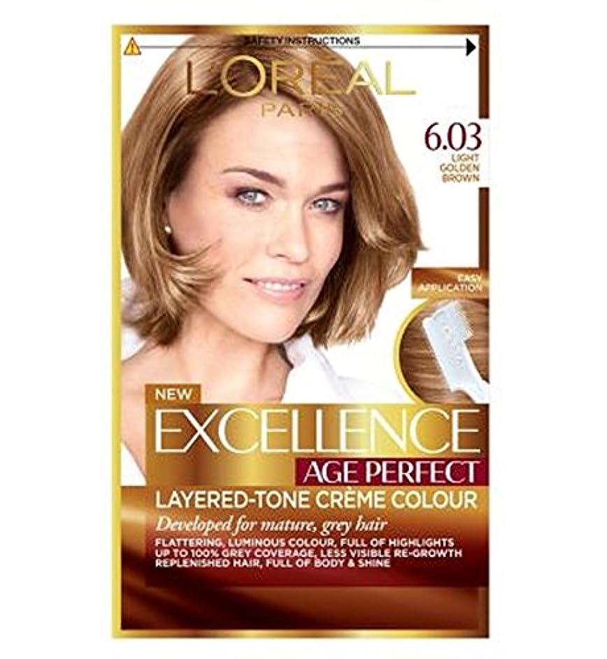 食堂データム文明化するL'Oreallパリ優秀年齢完璧6.03ライトゴールデンブラウン (L'Oreal) (x2) - L'Oreall Paris Excellence Age Perfect 6.03 Light Golden Brown (Pack of 2) [並行輸入品]