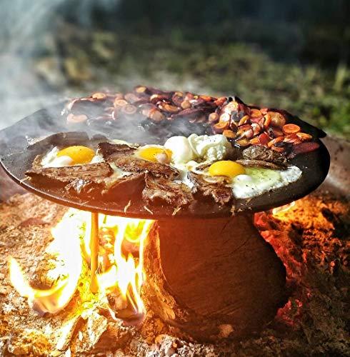 BBQ-TORO GPR2
