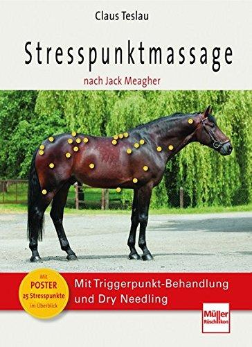 Stresspunktmassage nach Jack Meagher: Mit Triggerpunkt-Behandlung und Dry Needling