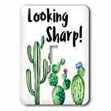 3dRose lsp_263624_1 Funny Ironic Looking Sharp Watercolor Cactus Quote Toggle Switch, Mixed