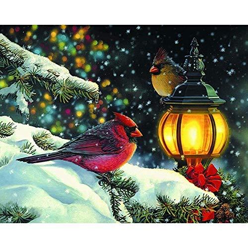 Murturall 5D DIY volledige vierkante diamant schilderij vogel lantaarn borduurwerk kruissteek strass mozaïek huisdecoratie