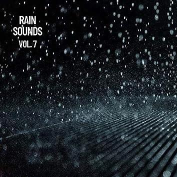 Rain Sounds Vol. 7, The Rain Library