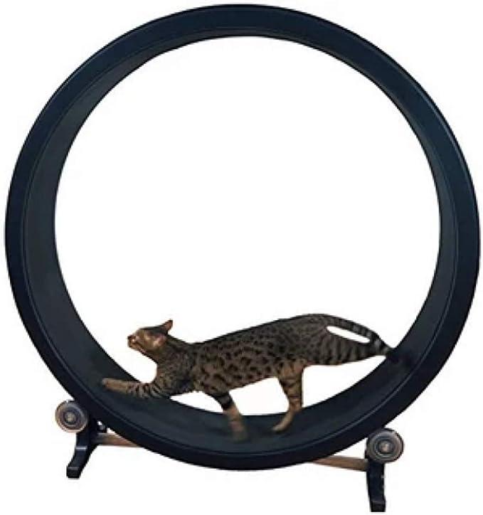 QNMM Rueda De Ejercicio para Gatos Marco De Escalada para Gatos Juguete para Gatos Arena para Gatos Muebles para Gatos Rodillo para Correr Cinta para ...