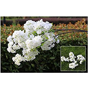 Silk Flower Arrangements Artificial and Dried Flower Fake Cherry Blossom Flower Brah Begonia Sakura Tree Stem for Event Wedding Tree Deco Artificial Decorative Flowers - ( Color: White )