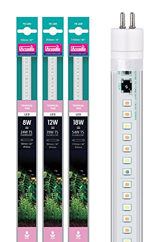 Arcadia LED Tube Tropical Pro 18 Watt FEET54 Aquarium (Länge wie 54 Watt T5 TL5 Leuchtstofflampe)