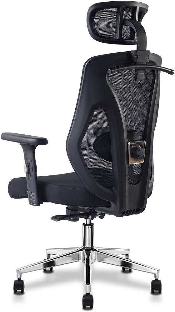 Cedric Ergonomischer Bürostuhl mit Lendenwirbelstütze,Weiche Sitzkissen Mesh-Schreibtischstuhl mit Verstellbarer…