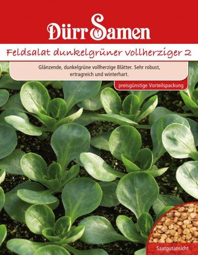 Dürr Samen 4100 Feldsalat Dunkelgrüner Vollherziger Vorteilspackung (Feldsalatsamen)