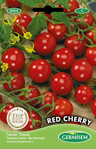 Germisem Red Cherry Semillas de Tomate 1 g (EC8004)