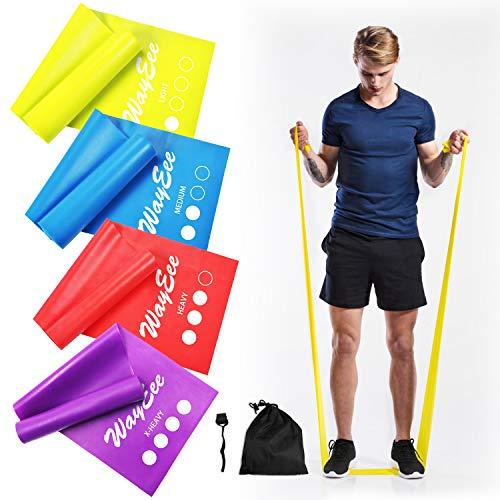 WayEee Bandas de Resistencia 4pcs Bandas Elasticas Fitness para Mujer y Hombre Cintas Elasticas Fitness 4 Niveles Ejercicios para Piernas,Glúteo,Brazo,Yoga,Pilates,Crossfit, Fuerza,Estiramiento