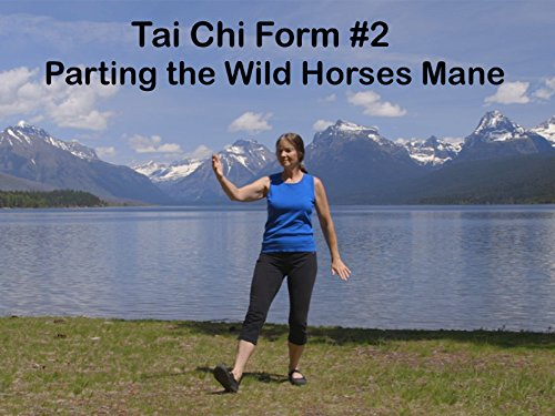 TaiChi Form #2 Parting the Wild Horses Mane