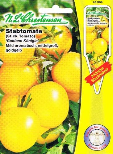 Stabtomate Tomate Goldene Königin mild aromatisch, mittelgroß, goldgelb
