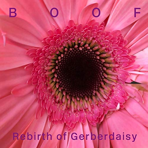 Rebirth of Gerberdaisy [Vinyl LP]