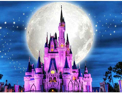 TINDAY Disney Paint by Number Castle DIY Paint by Number Kits for Kids Adults Disney DIY Canvas Painting by Numbers Moon Painting Acrylic Painting for Home Decoration Disney 16x20 Inch