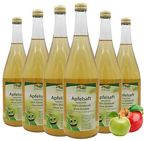 Bleichhof Apfelsaft naturtrüb - 100% Direktsaft, naturrein und vegan, OHNE Zuckerzusatz, 6er Pack (6x 0,95l)
