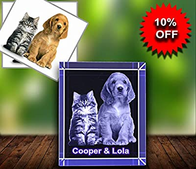 Personalized Custom 2D/3D Photo Etched Engraving on Medium Rectangle Crystal
