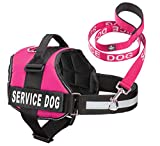 Industrial Puppy Service Dog Vest with Hook and...
