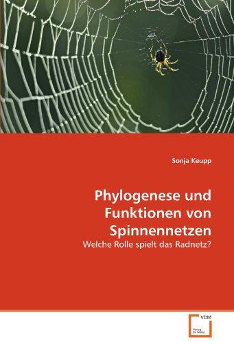 Phylogenese und Funktionen von Spinnennetzen: Welche Rolle spielt das Radnetz?