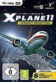 XPlane 11 Flugsimulator