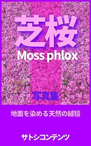 芝桜: 地面を染める天然の絨毯 (サトシコンテンツ)