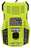 Ryobi P117 One+ 18 Volt Dual Chemistry IntelliPort Lithium Ion and NiCad Battery Charger (Battery Not Included, Charger Only) (Renewed)
