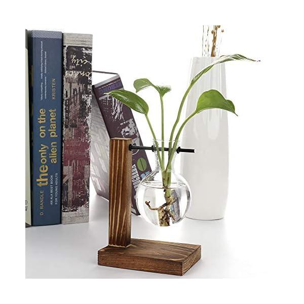 belupai Floreros hidropónicos vintage florero transparente marco de madera de cristal para plantas de mesa Bonsái…