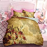Hiiiman - Juego de cama de 3 piezas, doble exposición quemada y Shaggy retro con diseño de flores y nubes (3 piezas, tamaño queen), juego de edredón con 2 fundas de almohada