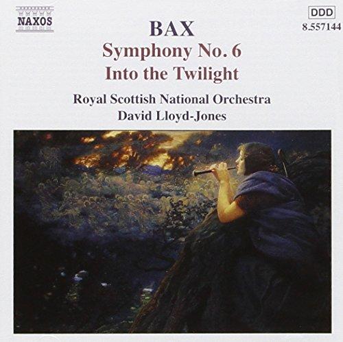 Sinfonia N.6, Into The Twilight, Su
