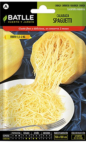 Batlle Gemüsesamen - Spaghetti Kürbis (10-25 Samen)