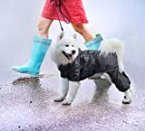 Zoom IMG-2 idepet impermeabile per cani con