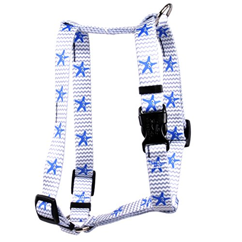 Yellow Dog Design Starfish Baby Roman Style H Dog Harness-X-Small-3/8 and fits Chest 8 to 14