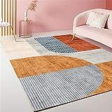 RUGMYW Alfonbras Lavable En La Lavadora Moderno Rugs alfombras Grandes la...