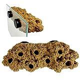 Magnetic Reef Frag Rack Floating Rock Plant Rack Strong N52 Magnets for 1/2' Glass (Brown)