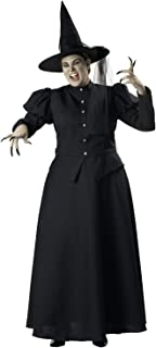 Wretched Witch Adult Costume