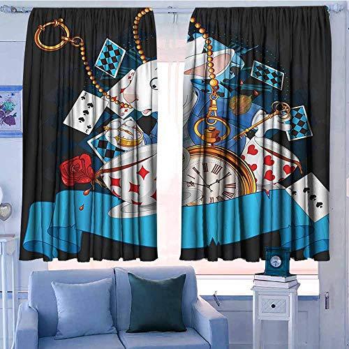 Lovii venster verduisteringsgordijnen staaf zak gordijn panelen voor slaapkamer & keuken vliegtuig Propeller en motor van vliegtuig wolken vlucht historische vogel transport thema Multi kleuren