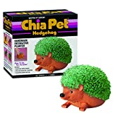 Joseph Enterprises, Inc Hedgehog Chia Pet Decorative Planter