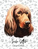 Irish Setter 2022 Planner: Dated Weekly Diary With To Do Notes & Dog Quotes - Calendar Planner for Pedigree Dog Moms