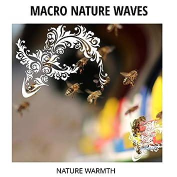 Macro Nature Waves - Nature Warmth