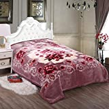 SIGNATURE SOLE Microfiber Extra Soft Double Bed Double Layered Blanket for Extreme Cold (King Size)