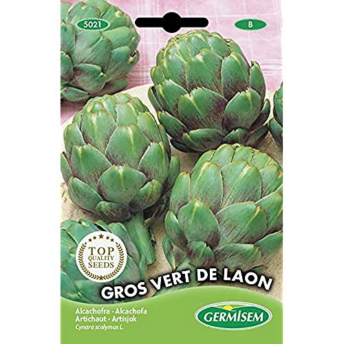 Germisem Vert de Laon...