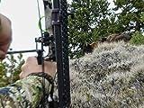 Utah Archery Bison