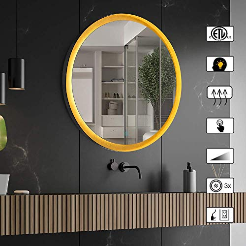 CITYMODA 24 inch Wall Mirror with Lights, LED Bathroom Wall Mounted Mirror Touch Button Anti-Fog Dimmer Function Waterproof Led Mirror