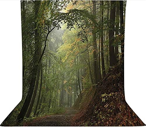 Fondo de fotografía de 1,2 x 1,8 m, telón de fondo de tela de microfibra con forro polar de bosque de otoño brumoso, con bolsillo para barra (solo telón de fondo) para fotografía de vídeo y televisión