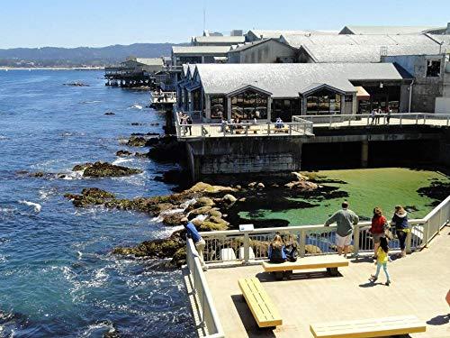 GIZIGI 5D DIY Diamant-Malbausatz mit rundem Bohrer, Monterey Bay Aquarium, Monterey, Kalifornien, Dekoration für Kinderzimmer, Rahmenlos 40x50 cm