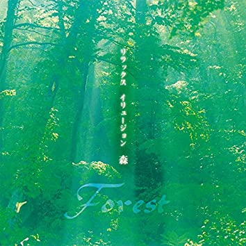 "Relax Illusion ~ Forest ""Mori"""