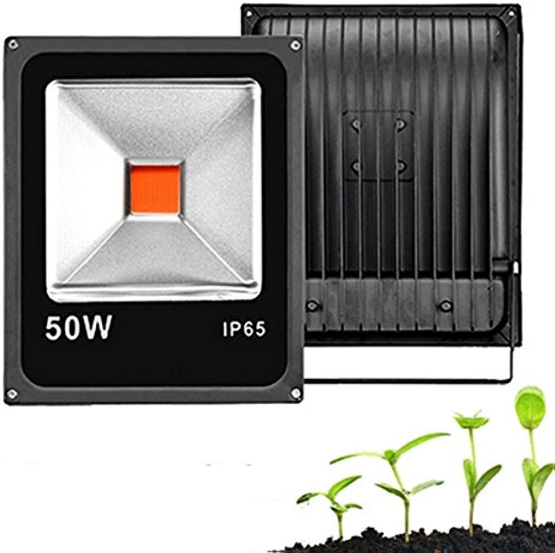 JINHUGU 20W 20W 20W 30W 50W volle Spektrum COB LED wachsen Pflanzenwasser Flutlicht wasserdicht für Gemüse Blaume AC85-265V 20W B07L7LWFX4   Ausgezeichnete Leistung  1174d2