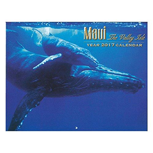 Maui Hawaii Hawaiian 12 Month 2017 Calendar