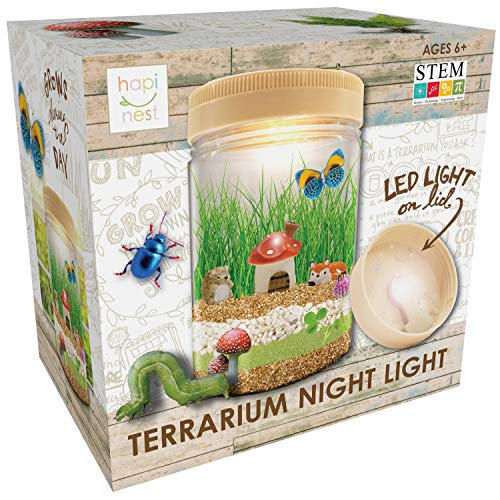 Hapinest Light-up Terrarium Kit for Kids, Arts and Crafts,...