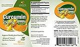 Zoom IMG-1 genceutic bcm 95 curcumin 250