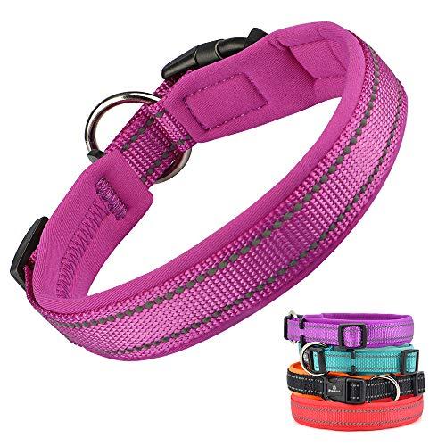 Pumila Einstellbare Hundehalsband Nylon Reflektierend Neopren Gepolstert Verstellbar Halsband Große Kleine Hundehalsbänder Leichtes Welpenhalsband mit Hundelicht -Lila-L